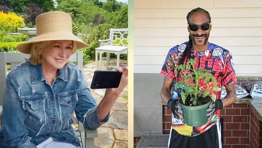 'My husband ran off': Pool selfie queen Martha Stewart showcases sass in 'Martha Knows Best'