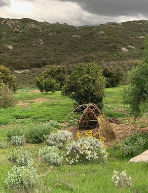 Grounds of Indigenous Regeneration in California. [Submitted]