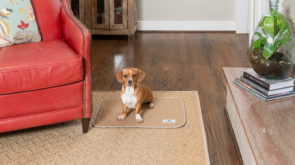 These reusable pee pads work at home and on the go.