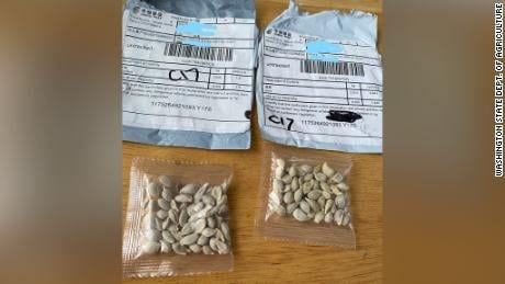 Chinese seeds  Provided