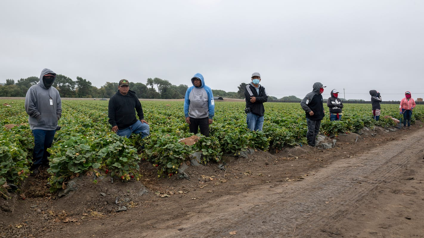 Gov. Gavin Newsom signs first-in-the-nation farmworker protections package
