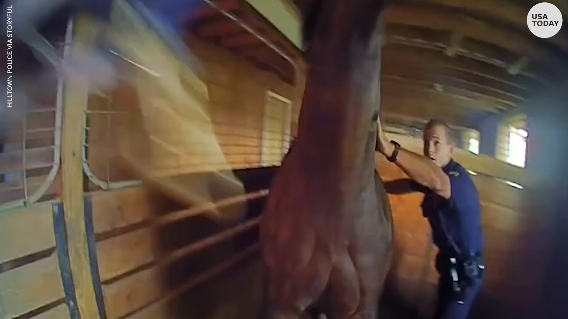 Two police officers help rescue horse trapped in a barn fire in Pennsylvania
