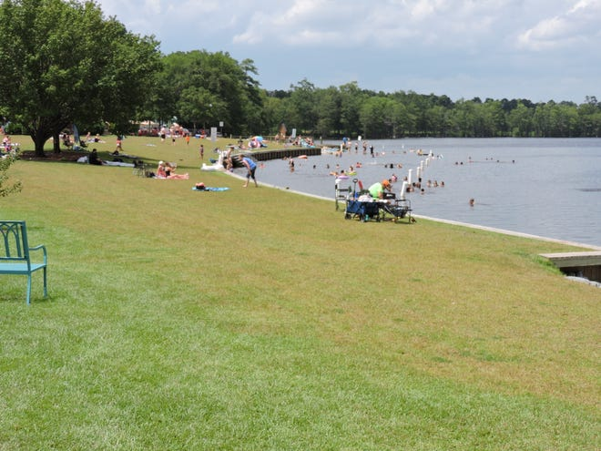 Hope Mills plans to plant water-loving trees at the lake park. [Lisa Carter Waring photo]