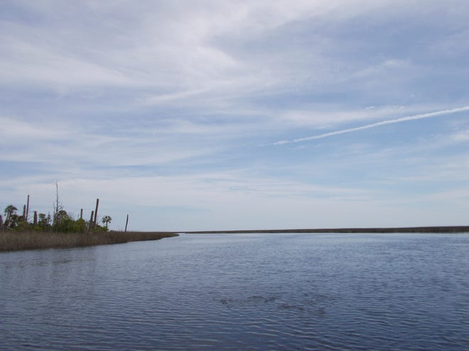 Sediment, nutrients, and pollutants that find their way into rivers and streams in Leon County eventually run into the Gulf of Mexico.