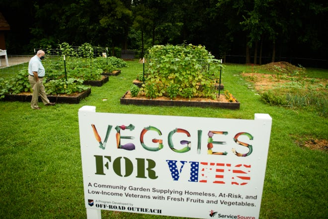 Jim Richter, ServiceSource director of operations, walks around the Veggies for Vets garden on July 30. Local nonprofits Off-Road Outreach and ServiceSource started the community garden for homeless, at-risk and low-income veterans.