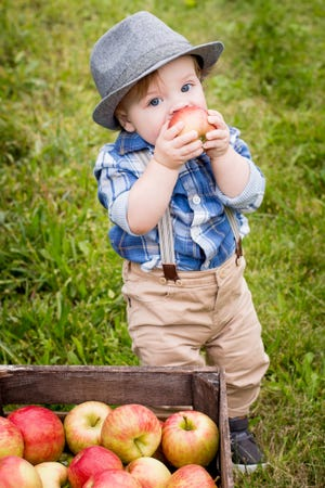 A child enjoys a just-picked apple from The Elegant Farmer.