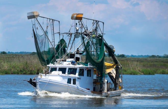 A shrimp boat plies the waters of southern Terrebonne Parish.