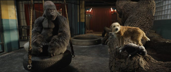 Ivan the gorilla, voiced by Sam Rockwell, and Bob, voiced by Danny DeVito, in a scene from ''The One and Only Ivan.''