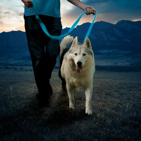 Be safe while walking your dog in the dark with the glowing NiteDog Rechargeable LED Leash ($29.99).