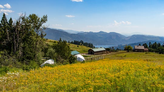 """Live out your """"City Slickers"""" fantasy at Bull Hill Ranch, where you can take part in a real-life cattle drive while overnighting in cabins or glamping tents"""