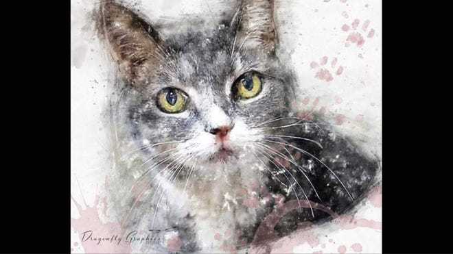 Local artist Debbie Boungiorne Gent paints portraits of long-time shelter pets to help prospective owners see them the way she does. [CONTRIBUTED PHOTO]
