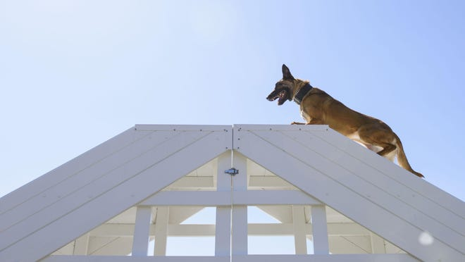 The Senate version of the 2021 National Defense Authorization Act calls for allocating $119.9 million for Fort Bragg special operations forces facilities, including $17.7 million for a military working dog facility.