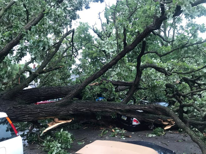 A storm with gusts more than 80 mph knocked down a tree, which crushed about four cars in Des Moines, Iowa, on Monday.