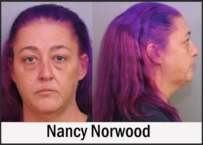 Nancy Norwood, 41, of Tampa, is accused of leaving the scene of a crash with serious injuries and DUI, among other charges, according to the Polk County Sheriff's Office.