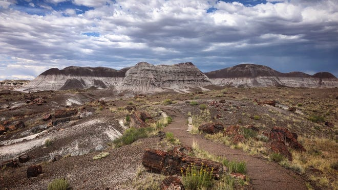 """Visitors can see an """"ancient log jam"""" that dates back to the Triassic period over 200 million years ago on the Long Logs Trail at Petrified Forest National Park."""