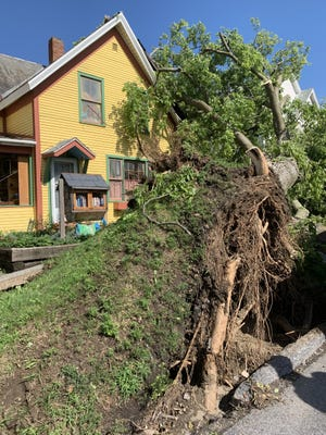 A fallen tree lays in front of a house on Intervale Avenue. August 12, 2020.
