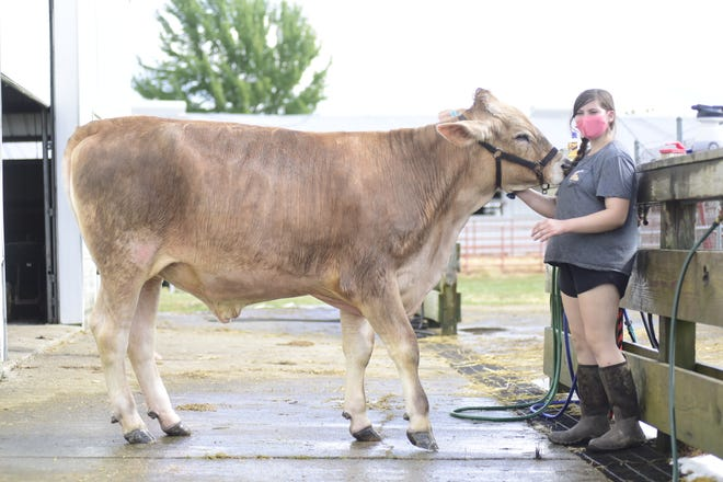 Gracie Rodman, 13, and her steer, Smores, were happy to get the chance to show at the 2020 Richland County Fair.