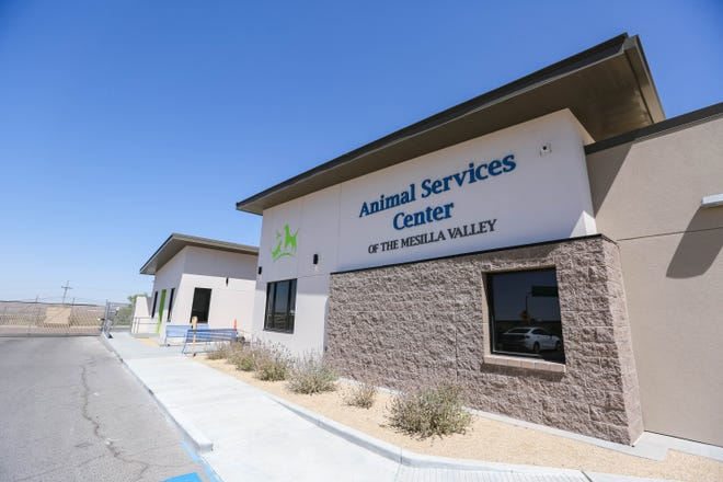 The Animal Services Center of the Mesilla Valley in Las Cruces on Wednesday, August 12, 2020.