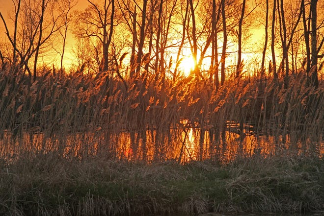 The sun sets at the Ottawa National Wildlife Refuge.