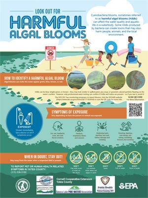 Harmful algal blooms (HAB) informational signage.