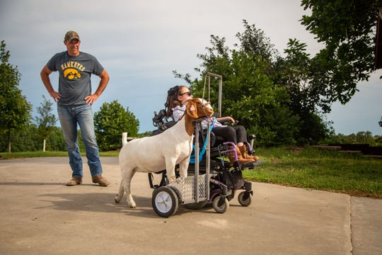 Stella Turnbull, 13, trains to show her goat Bella in the Iowa State Fair as her father Travis looks on at their home outside Pella Monday, Aug. 10, 2020.