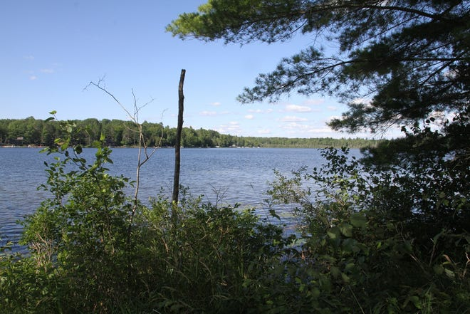 A water view from a lot (DNR parcel #309603, starting bid $9,600.00 ) on Dyer Lake in Missaukee County.