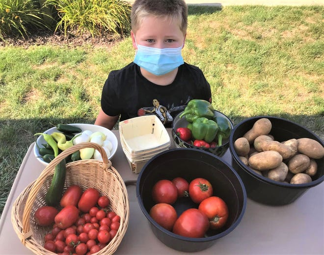 Jacoby Evarts held a vegetable and lemonade stand sale to raise month for the Outreach Center in Gibsonburg.