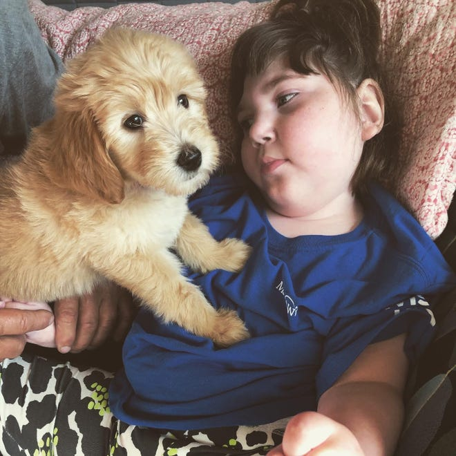 Marjorie Aurelius, a Sister Bay 6 year old born with a traumatic brain injury, was gifted her puppy Rue through the Make-A-Wish Foundation.