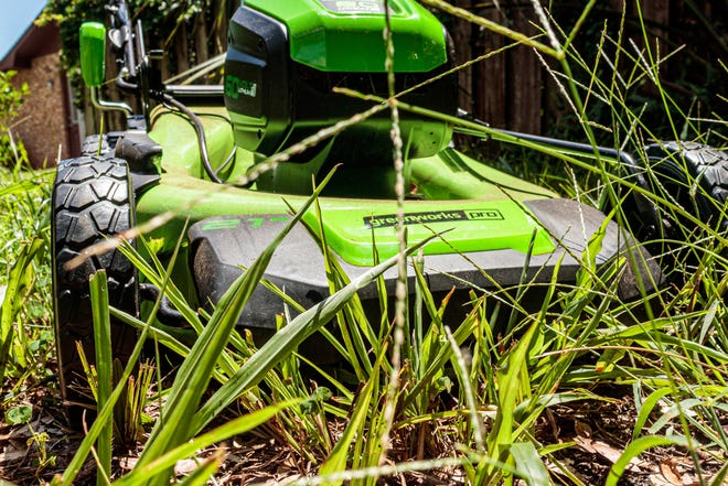 A battery-powered lawn mower prepares to take on some serious weed-chewing action.