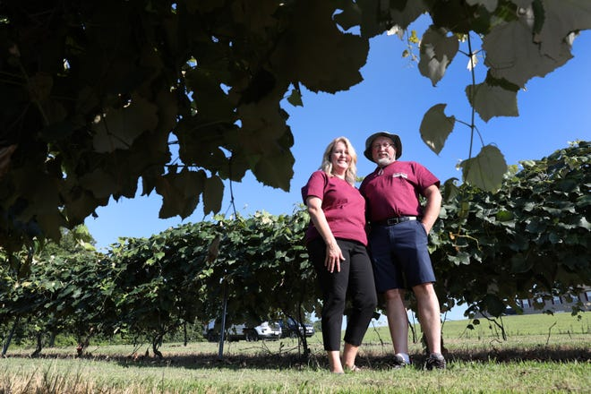 Mike and Cheryl Barker, own and operate Stone Crest Vineyard near Frazeysburg. The winery, nestled in the corner of Muskingum County not far from Licking and Coshocton counties, opened in 2007.