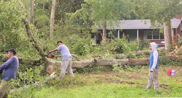 Trees are removed Saturday in front of a residence on Malphrus Road in Ridgeland following a severe thunderstorm Friday.