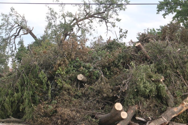 Tree limbs and debris builds up in the parking lot on the corner of Harold Bailey Way and West Third Friday, Aug. 14.