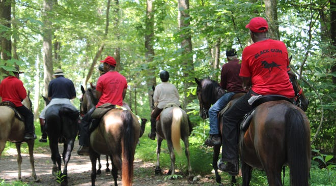Princess Anne Hunt trail ride fundraiser host Jim Daniels, wearing white pants, leads riders to Bachelor's Point in Charles City on July 28, 2020.
