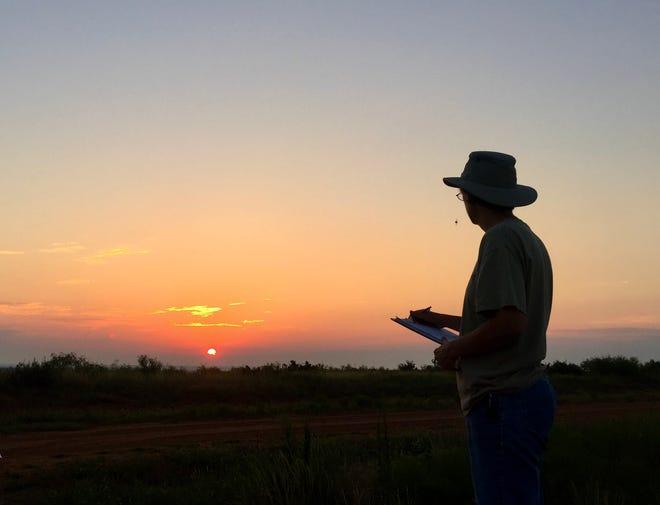 A beautiful Texas sunrise.