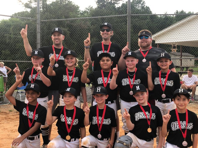 The Hasty Wildcats won the Davidson County Babe Ruth U10 Minor Boys tournament. [Contributed photo]