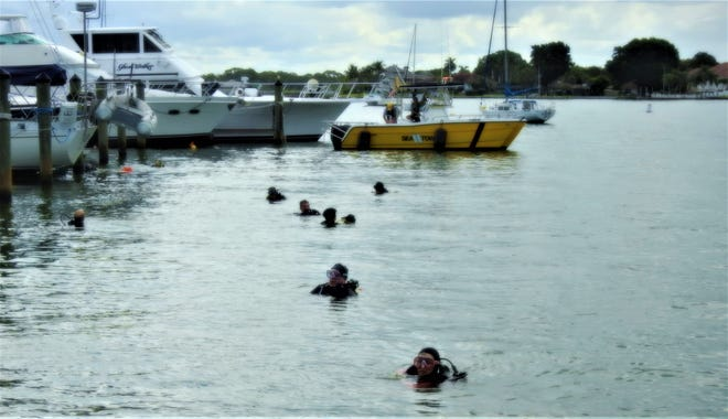 Divers search for debris in the Venice Yacht Club Marina on Aug. 15. (Photo by Bill Bowen)