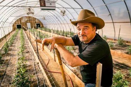 "Jim Belushi talks about his Oregon cannabis farm in ""Growing Belushi."""