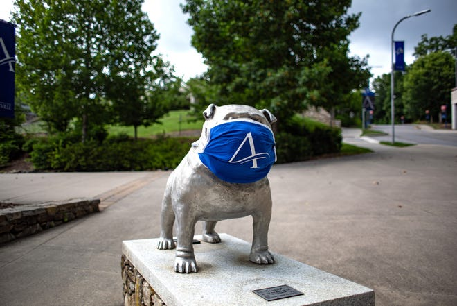 UNC Asheville is taking the lead on COVID-19 research, both locally, at the state level and nationally.