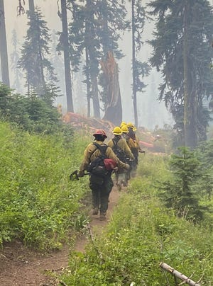 Fire crews battle the Red Salmon Complex in Trinity County on Aug. 2, 2020: The complex of fires were ignited by lightning on July27, 2020.
