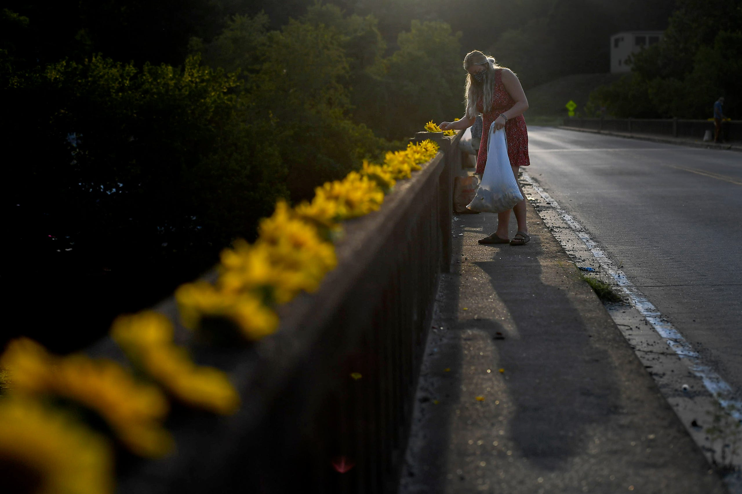 Sunflowers from Olivette Farm are placed along Craggy Bridge in Woodfin August 19, 2020.