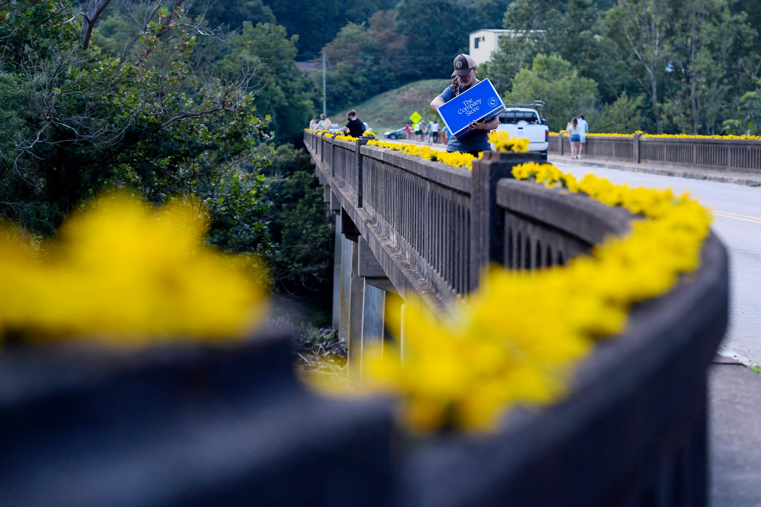 Giuseppe Ferdinandi places sunflowers from Olivette Farm across the Craggy Bridge in Woodfin August 19, 2020.