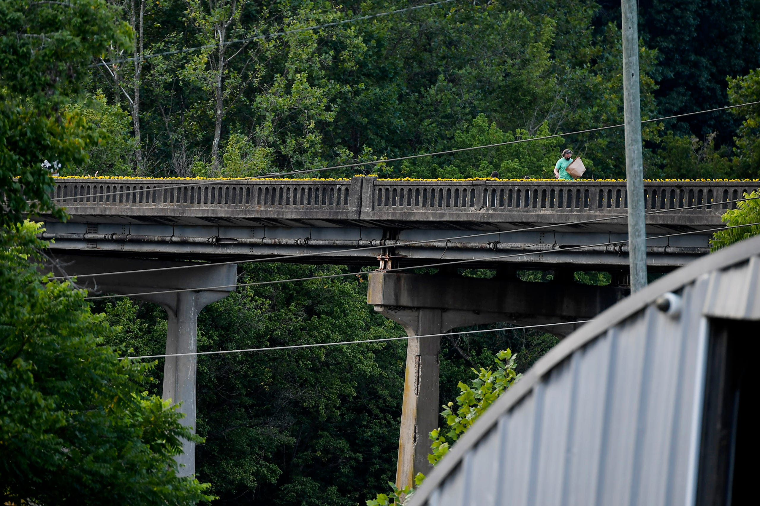 Residents of the Olivette community picked sunflowers to spread cheer across the Craggy Bridge in Woodfin August 19, 2020.