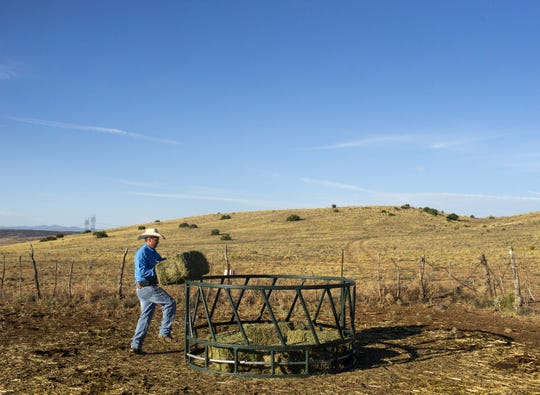 Rancher Trenton Hancock lifts a bale of hay for his cattle on a ranch near St. Johns, Ariz., on Aug. 13, 2020. The land would usually be green this time of year, but the lack of monsoon rains has left the grasslands parched.