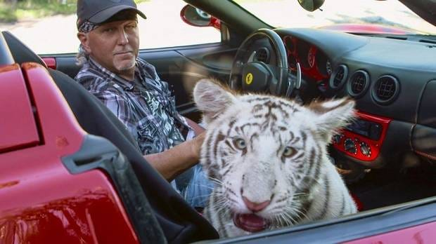Three lions confiscated from  Tiger King  star Jeff Lowe s shuttered Oklahoma zoo