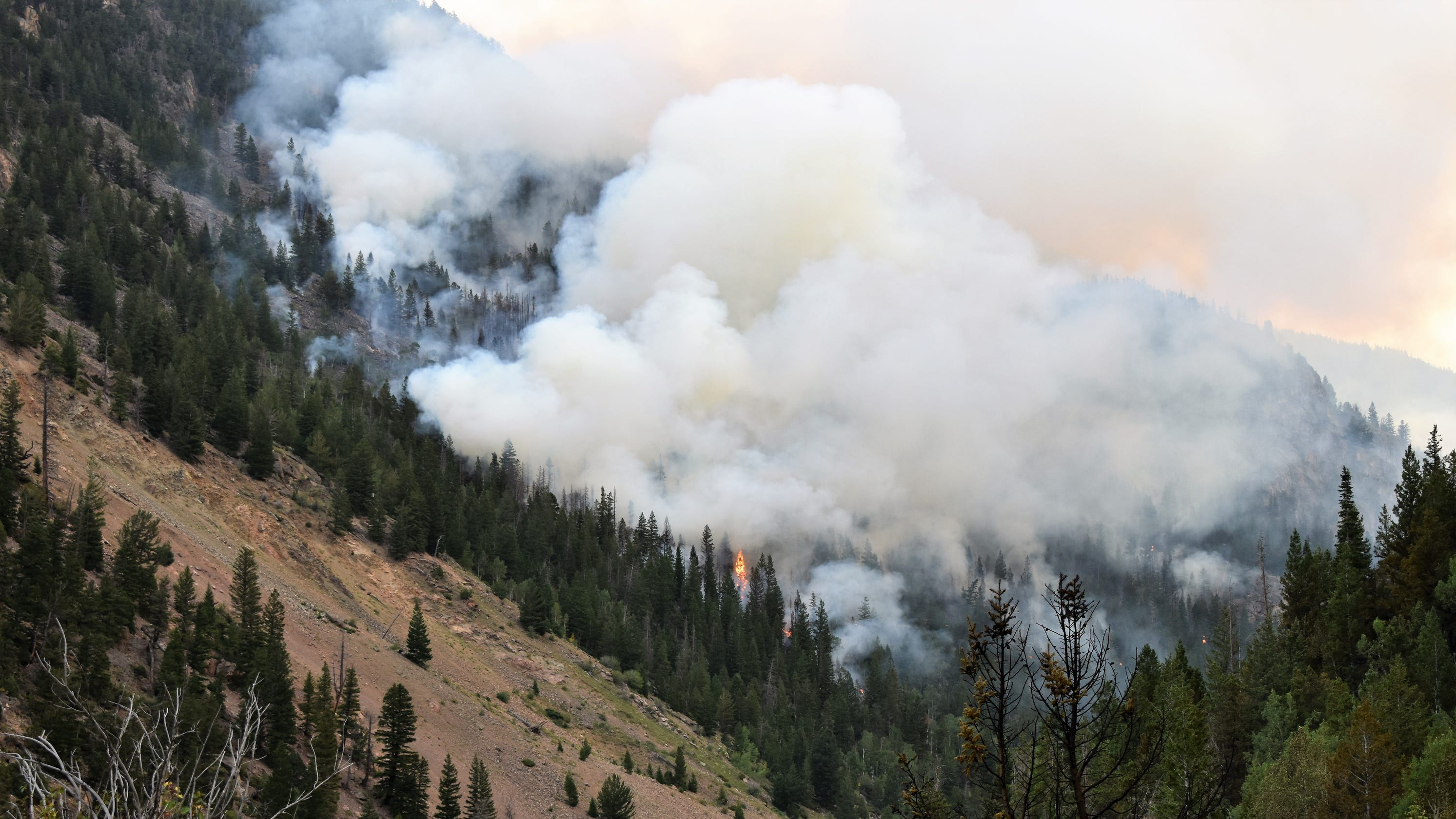 Cameron Peak Fire size remains unchanged, thunderstorms, dry lightning possible this weekend