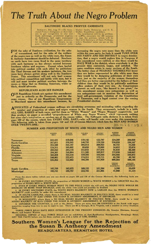 """A racist anti-suffrage pamphlet titled, """"The Truth About the Negro Problem,"""" was distributed by the Southern Women's League."""