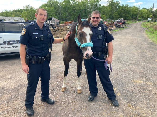 Hilltown police officers Kristian Hanus (left) and Matthew Reiss with Phoebe, the mare they rescued from a barn fie at Redwing Farm on July 23.
