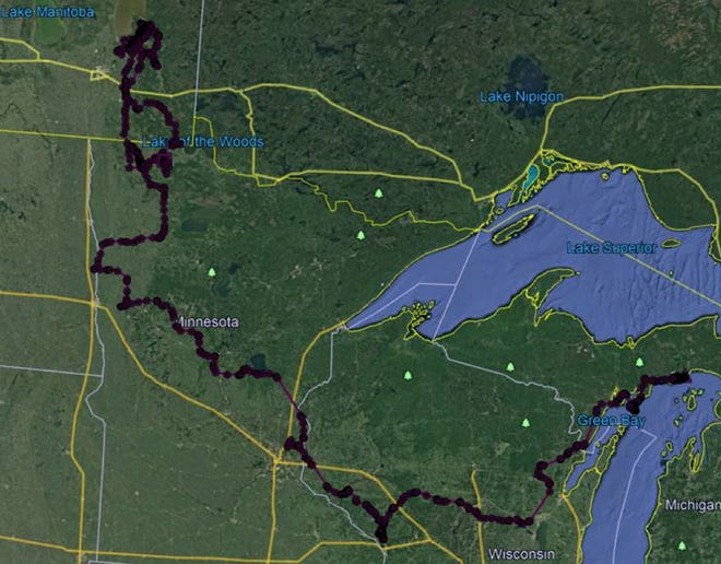 An adult male gray wolf travelled at least 1,973 miles after being fitted with a GPS tracking collar Jan. 30 in the Upper Peninsula of Michigan. The animal's path is shown in the attached map, and included a loop across the U.S.-Canada border into Manitoba. The wolf was illegally killed Aug. 2 in northwestern Minnesota.