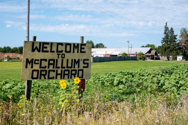 Ray Peltier, owner of McCallum's Orchard, doesn't expect to see a drop in customers this year, but they will be enforcing social distancing and taking extra precautions to help prevent the spread of COVID-19.
