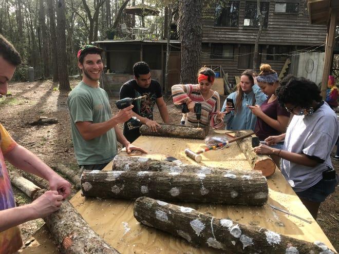 Volunteers learning to make shiitake mushroom logs.